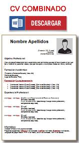 Plantilla de Curriculum combinado en word